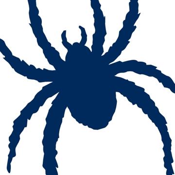 OC DOLLEY 'SPIDER'